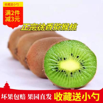 正宗江山徐香猕猴桃新鲜水果奇异果绿心非红心黄心猕猴桃当季现摘