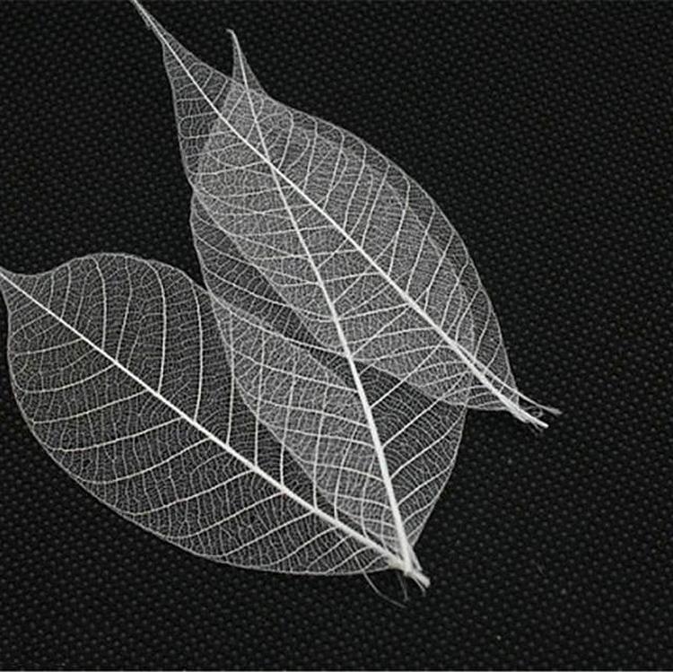 永生花�Y盒白色透明�~�}�M口大地�r�@diy��旒�玻璃罩相框材料