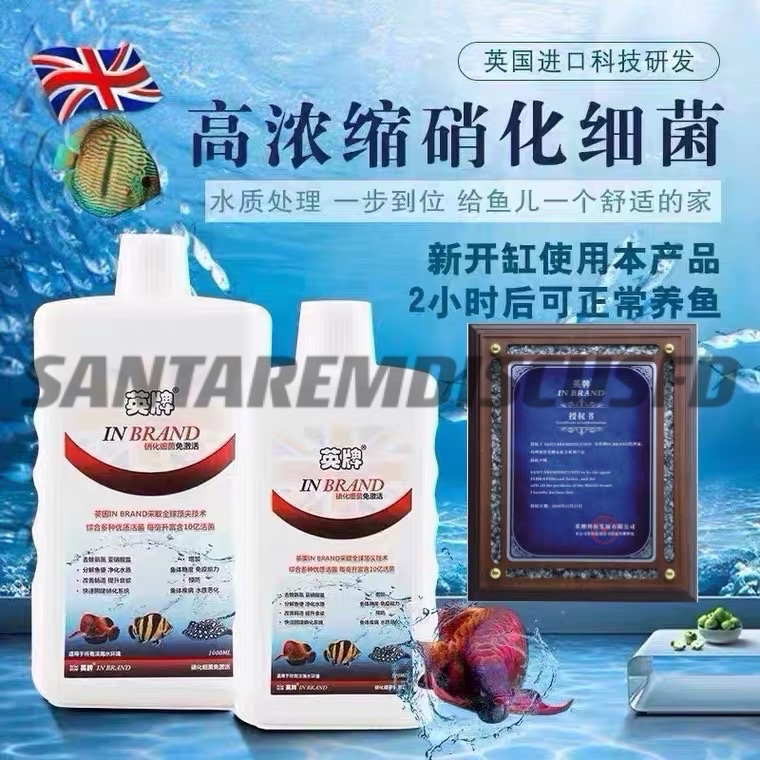 英牌硝化细菌鱼缸用净水剂水族消化细菌胶囊活菌干粉水质稳定剂