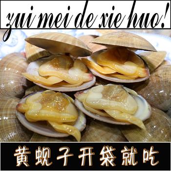 开袋即食大黄蚬子熟食海鲜冰鲜真空原汁蛤蜊白蚬子花蛤贝丹东海鲜