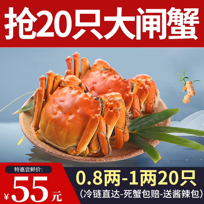 【现货20只0.7两-1两】中阳湖大闸蟹鲜活六月黄鲜活螃蟹公母混发