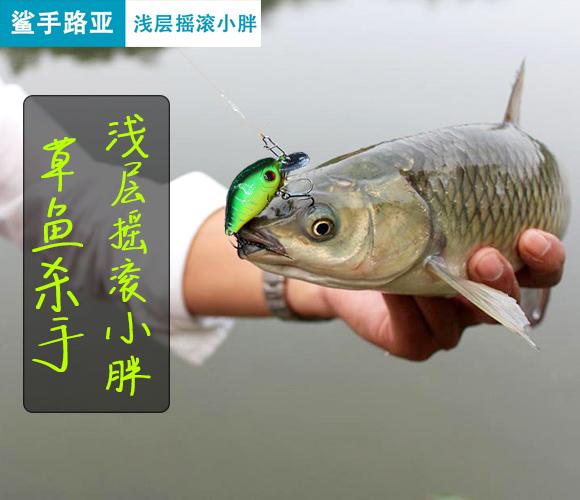 路亚小胖子草鱼路亚饵鲈鱼翘嘴马口淡水鱼饵5.5cm/7.5g仿生假饵