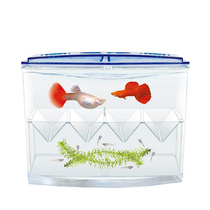 Isolation box Incubator box ornamental fish peacock bucket fish tank outside independent breeding multifunctional propagation acrylic suspension