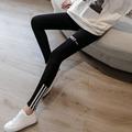 韩版运动外穿春夏季弹力纯棉小脚裤