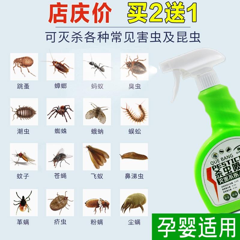 去除灭祛车内蚂蚁蟑螂跳蚤药床上螨虫车用家用室内无毒厨房小飞虫10月17日最新优惠