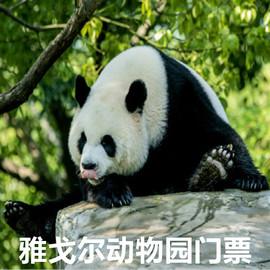 [寧波雅戈爾動物園-大門票]雅戈爾動物園成人門票 今天可用圖片
