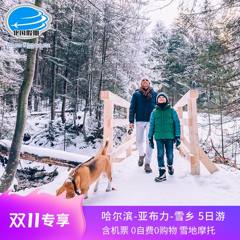 哈尔滨雪乡亚布力纯玩双飞五日东北滑雪冰雪大世界5天4晚跟团旅游