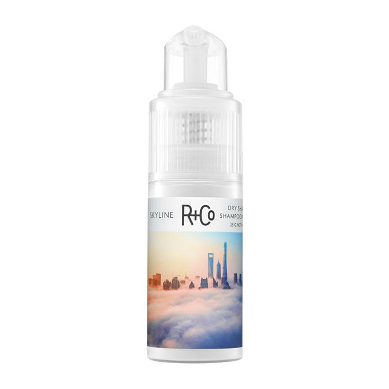 R+Co蓬蓬粉28g头发去油粉蓬松神器蓬蓬粉免洗干发粉油头蓬松粉