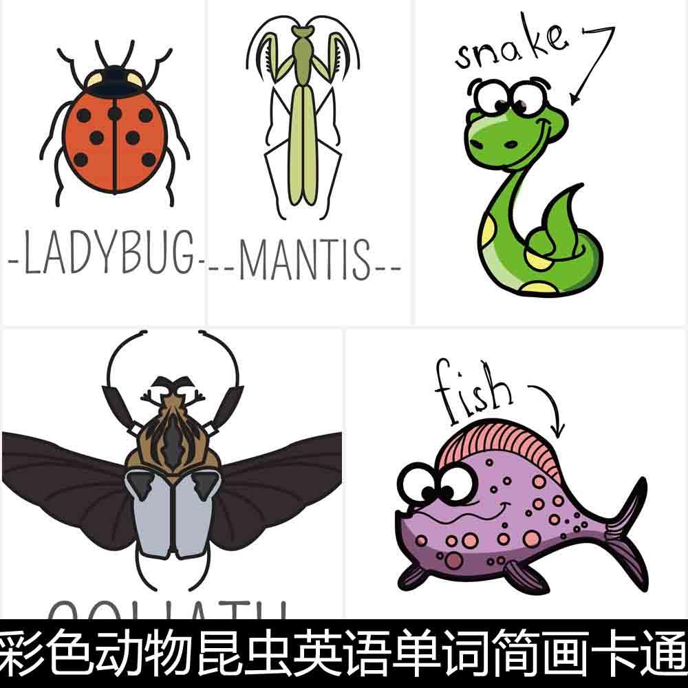 AUC彩色动物昆虫英语单词简画卡通图文设计矢量素材资料参考,可领取元淘宝优惠券
