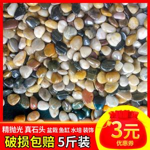 领3元券购买鹅卵石雨花石原石天然小石子鱼缸花盆鹅软石装饰盆栽园艺五彩石头