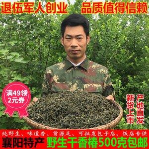 干香椿芽干货500g湖北襄阳土特产野生嫩香春菜农家自采晒干香椿叶