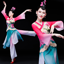Feifen Bride Elaine Says Classical Dance Adult Lotus Performing Dance Costume V-neck Long Sleeve Suit Woman