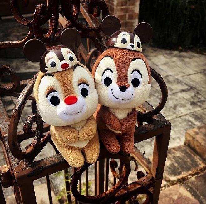 日本购回 花栗鼠 奇奇蒂蒂 Chip n Dale 坐姿宝宝玩偶 现货