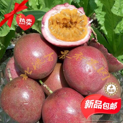 广西特产北流纯天然百香果新鲜多汁西番莲孕妇果3斤大果现摘包邮