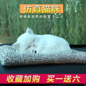 领5元券购买仿真猫咪毛绒摆件可爱玩具竹炭包