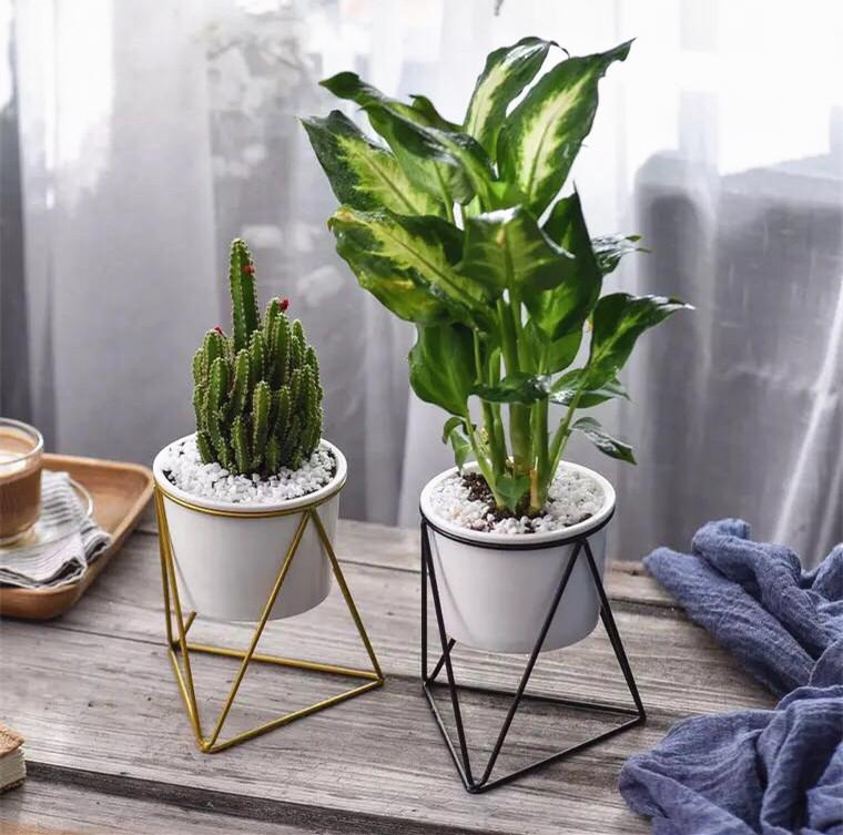 Слева M | Северная Европа золотой Подставка из кованого железа поколение Зеленая растение цветок гончарный кактус горшечное растение