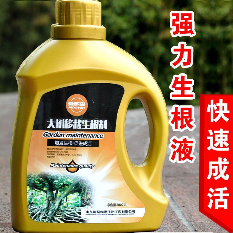 大树生根液植物通用生根粉剂果树木移栽成活液花卉扦插大树发根液