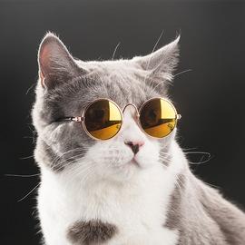 巴顿同款猫咪眼镜泰迪小型犬太阳镜英短布偶墨镜小狗饰品宠物用品图片