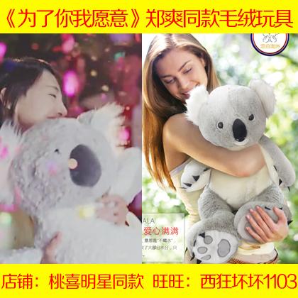 为了你我愿意热爱整个世界李木子郑爽同款考拉毛绒玩具熊公仔玩偶