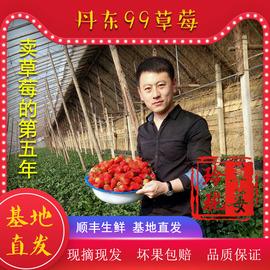 丹東99草莓3斤裝東港紅顏九九新鮮大草莓奶油牛奶孕婦助農水果圖片