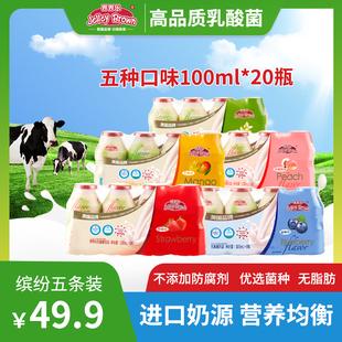 界界乐进口奶源乳酸菌含乳饮料儿童网红抖音益生菌早餐酸奶5条装