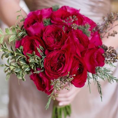 【可乐的花园】欧月新品苔丝月季 切花 红色 奥斯丁品种 扦插小苗