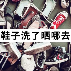 爱宝奇 5只装不锈钢晾鞋架防风晒鞋架XH20405