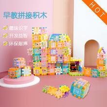 幼儿童早教塑料积木玩具3-6周岁男女孩益智宝宝1-3岁拼装插创意园