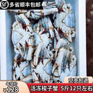 新鲜冷冻梭子蟹全母海螃蟹鲜活速冻礼盒装5斤12只左右