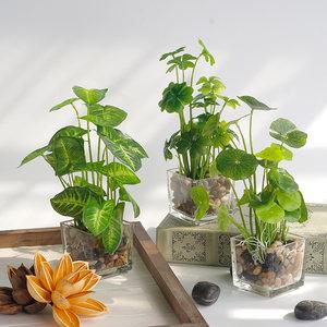 紫藤世纪北欧仿真植物小盆栽绿植摆件假植物客厅摆设装饰花艺盆景