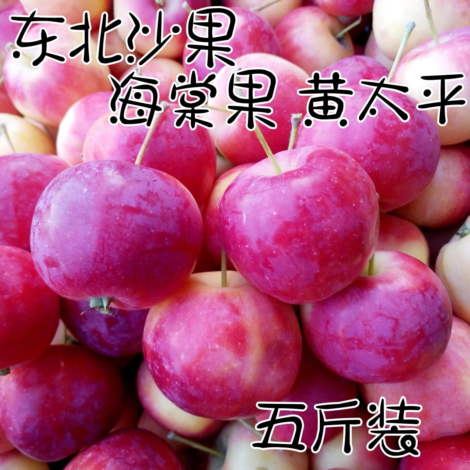 东北特产海棠果 沙果小苹果孕妇水果新鲜现摘现发一份5斤包邮农家