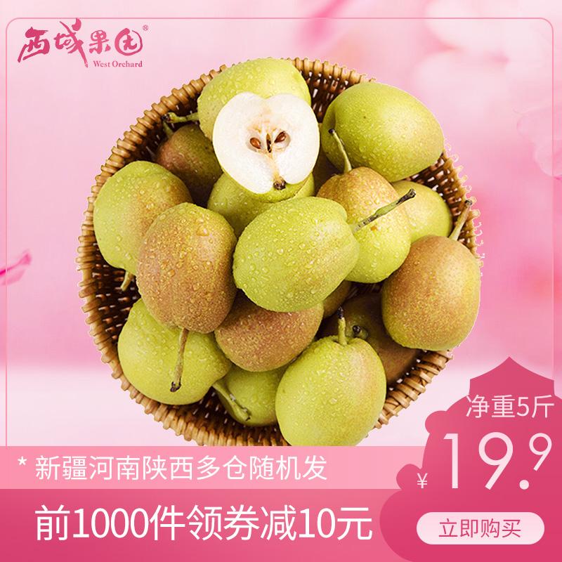 新疆库尔勒香梨5斤青皮脆小梨子现摘当季孕妇新鲜水果整箱包邮10