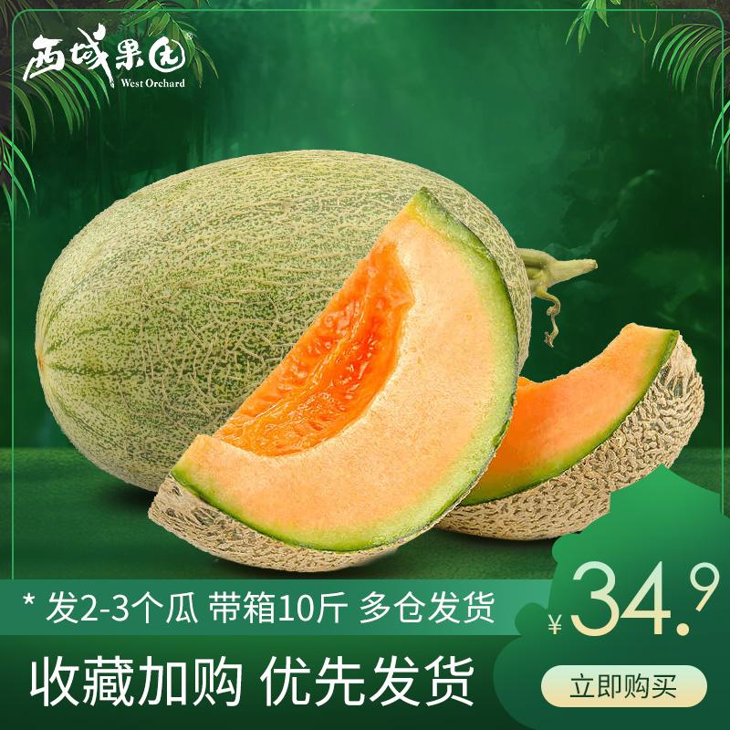 新疆哈密瓜西州蜜25号甜香网纹瓜当季新鲜水果一整箱批发包邮