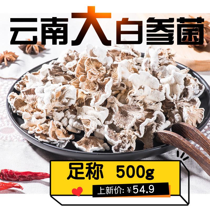 白参菌干货500g包邮 干净好洗裂褶菌雪莲菌云南菌菇野生菌食用菌