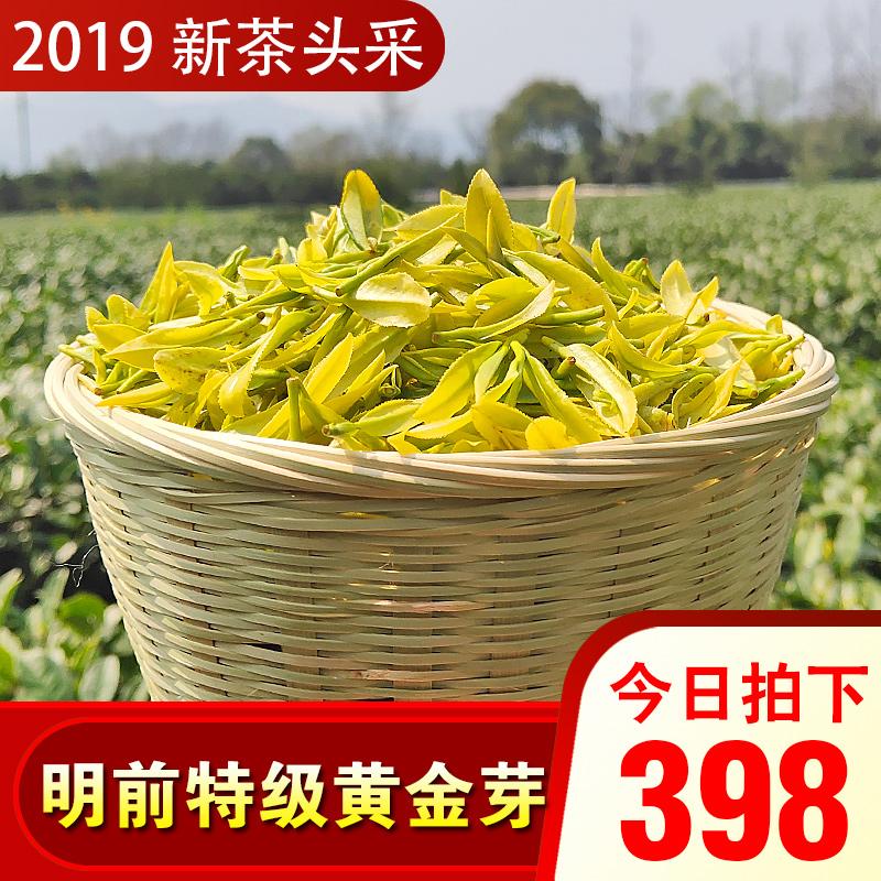 安吉白茶2019年新茶明前特级高山品质头采嫩芽250g珍稀黄金芽茶叶