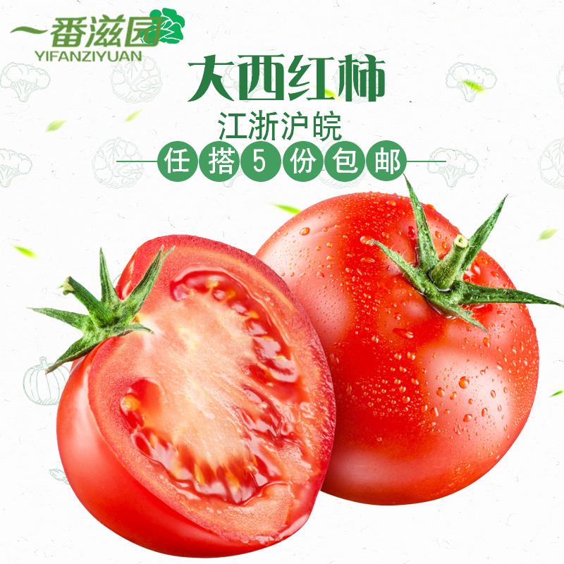 一番滋园大番茄新鲜西红柿露天种植自然熟5斤装江浙沪皖5件包邮