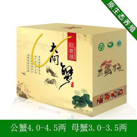 现货正宗阳澄湖鲜活大闸蟹正品4对雌雄8只母螃蟹3.0-3.5两 礼盒装