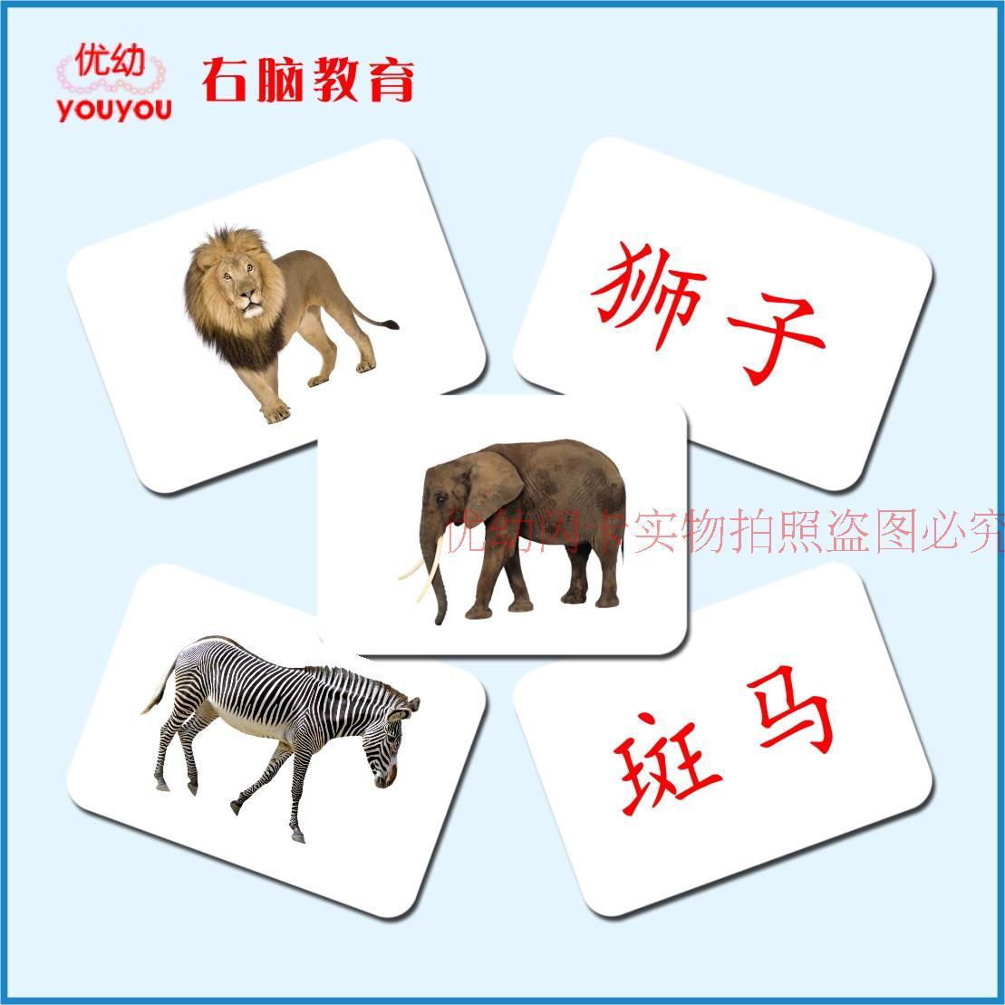 杜曼百科动物闪卡幼儿童早教益智看图识字右脑潜能开发认知卡片