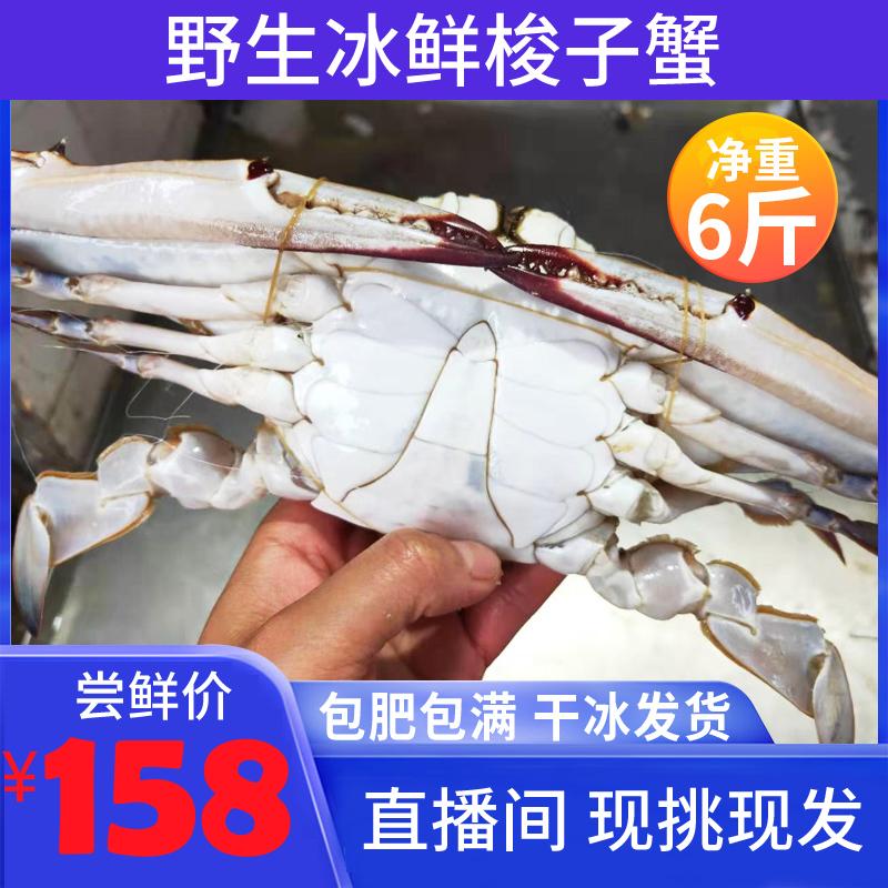 海鲜水产螃蟹冷冻大闸蟹舟山梭子蟹特大超大野生青蟹白蟹6斤