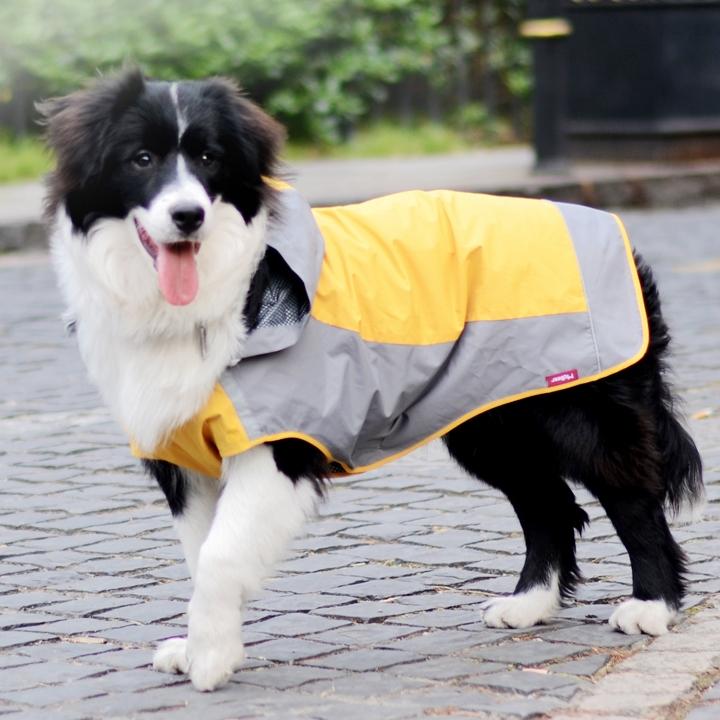 宠物狗狗雨衣雨披 大中型犬雨衣萨摩 边牧金毛大狗四脚衣服春夏装