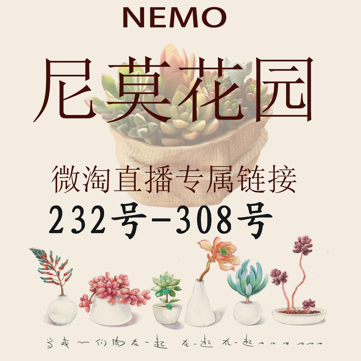 232-308号 尼莫花园 多肉植物  微淘直播专属链接  满68元包邮哦