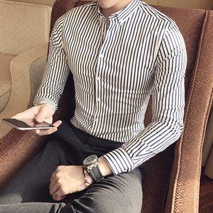 韩国简约圆领细条纹修身衬衫男复古紧身打底贴身发型师小衬衣男潮