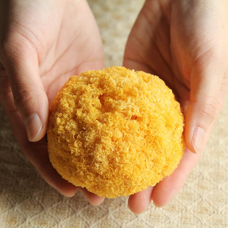 古田シロキクラゲ250 g福建白キクラゲのモチモチとした耳と丑い耳の乾燥品のスープ煮の砂糖水の材料