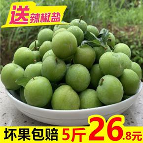 【整箱5斤】新鲜李子现货酸脆三月李孕妇水果当季青李三华李包邮