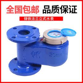 铸铁立式法兰水表 冷热水竖式法兰水表DN50 65 80 100mm 2寸 4寸图片