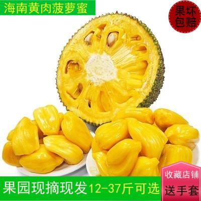 (用1元券)海南12-37斤当季黄心新鲜热带水果