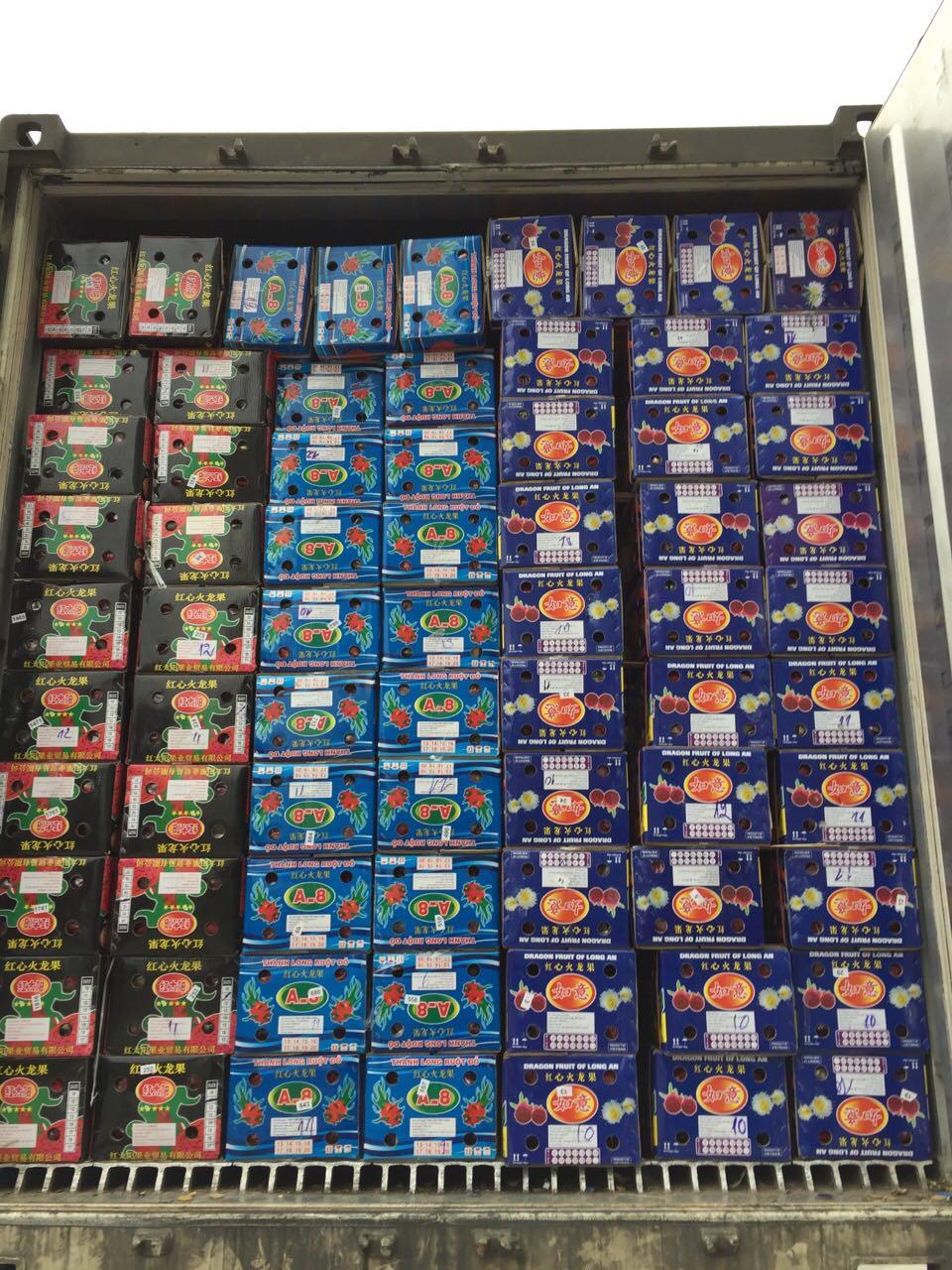 特价现货越南红心火龙果中果原箱15-17个 红肉火龙果新鲜应季水(用108元券)