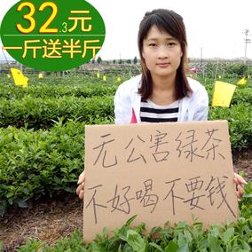 日照足绿茶2020新茶春茶云雾19山东炒青高山茶叶礼盒散装500g浓香
