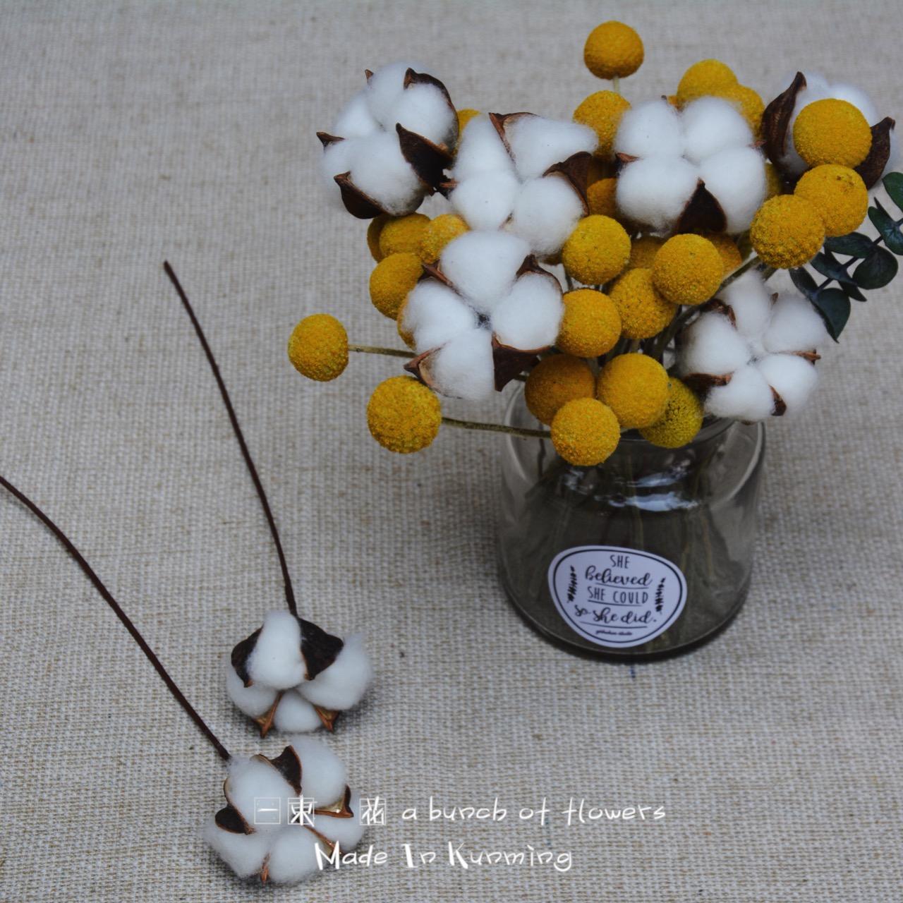 Хлопок сухие цветы один тапок вечная жизнь цветок DIY сухие цветы декоративный украшение букет действительно цветок стрельба реквизит