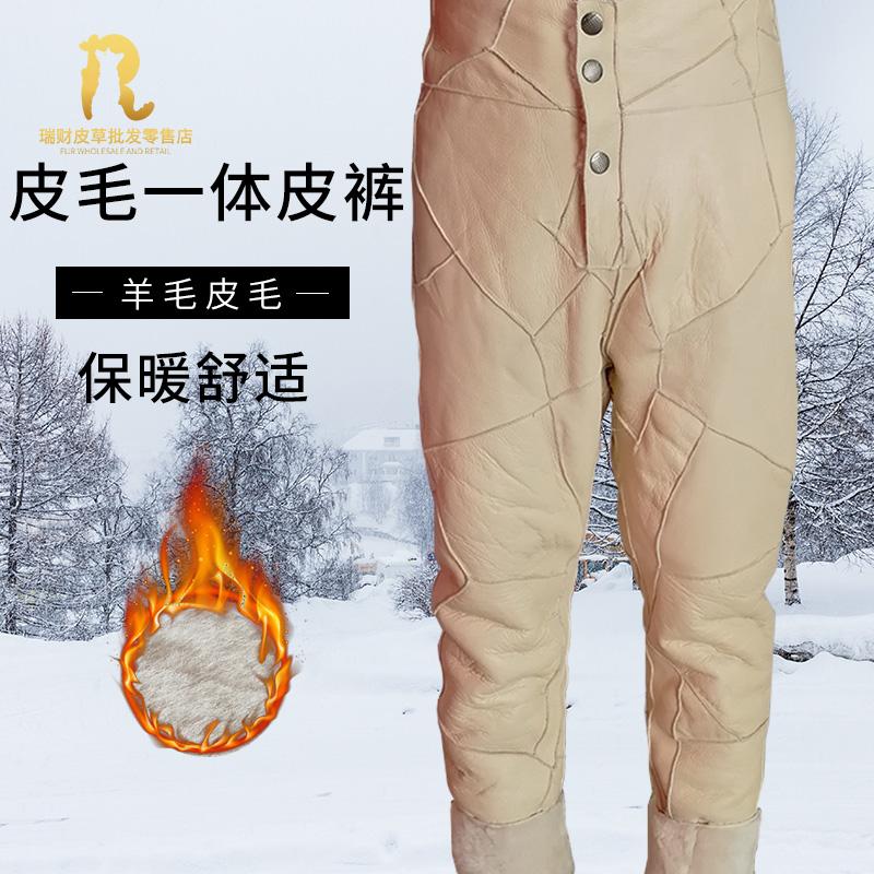 Кожаные брюки Артикул 560017531043